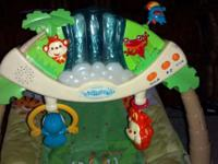I have a rainforest bouncer. It's in great condition,