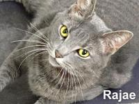 Rajae's story Rajae is a sassy gal looking for a new