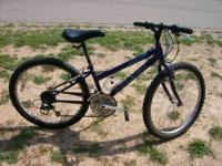 "Used Raleigh Mountain Scout for sale with a 24"" wheel"