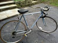 I just bought this bicycle a month ago from a man who