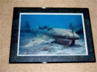 """Warhawk Reef"". Limited edition Randall Scott framed"