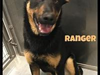 Ranger - 106 / 2018's story Please contact Maumelle