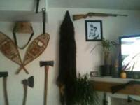 Very nice black timber wolf pelt would look great in
