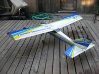 I have a Tower Hobbies Trainer 60 inch wing span with a