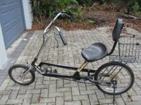 Recently serviced by the Bike Doctor. Recumbent Bike