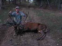 CABIN CREEK GAME RANCH We are offering Red Stag hunts