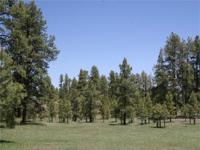 LOT 12. This 3.50 acres regulates 450 feet of common