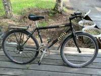 I'm selling my REI Novara Arriba mountain bike. It