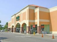Publix Anchored Shopping Center located at the