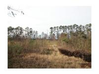 This 8.8 acre tract lies simply off of I-95, 10 minutes