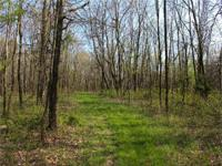 This secluded 55 acres of hunting land in Mercer County