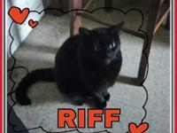 Riff is approximately three years old and has lived