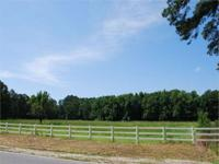 APPROXIMATELY 53 ACRES Located in Effingham County