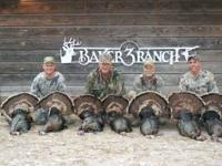 Spring Turkey Package Hunt $1200 Enjoy 3 days of some