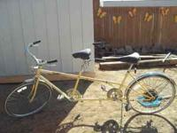 I have a tandem bike for sale. Older model and needs