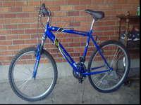 Blue. Both tires are flat. Needs a new chain. $100 or