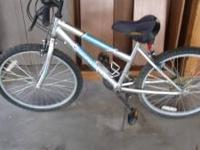 "24"" Bike - 15 speed with index shifting - silver and"