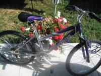 hello i have a Roadmaster Mt sport 5X bike. its a hard