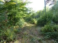 #1814 ~ UNDER CONTRACT! 11+/- acre parcel across from