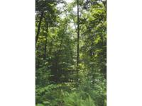 Pocono Land Bargain Mixture of woods and field make