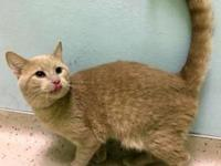 Rost's story I am located at Janesville PetSmart! If
