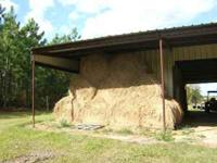 Round Rolls of Bahia Hay Barn Kept, ONLY 18 Left $40.00
