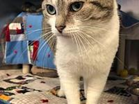 Ruby's story All of our adoptable pets are spayed or
