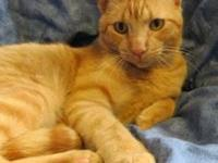 Rudy's story Rudy is an extremely sweet young man, who