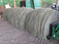 Rye grass hay baled Sunday $30ea only have 4 bales Will