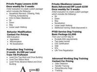 Veteran Owned, Non Profit, Dog Training Facility All