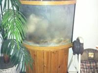 Salt water Tank with stand Needs to be cleaned but
