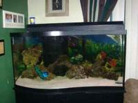 100 gallon saltwater fish wave tank and stand, comes