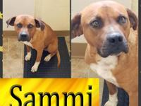 Sammi is waiting! This uber handsome one-year-old boy