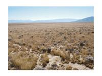 Location: Unit 23, Lot 100 Rio Grande Ranchos. Call