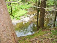 WATERFRONT ACREAGE on TROUT BROOK. 24 acres 230' on