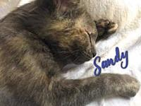 Sandy's story Visit this organization's web site to see