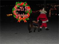 Rent your Santa Claus and pony dressed like reindeer