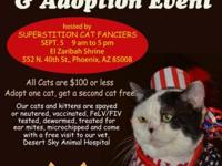 Join All About Animals Rescue and Superstition Cat
