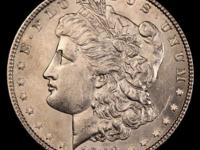 Savvy Longtime Coin and Artifacts Collector is