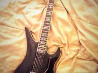 Calling all Shredders !!! I have a Schecter Synyster