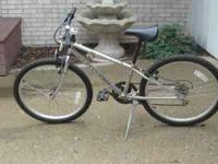 Schwinn Bike 10 years old used once Divorce kept child