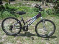 Really nice riding bike, that is very durable 24""