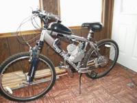 Schwinn motor powered bike, You do have to pedeal then