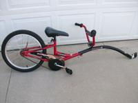 Schwinn bike attachment for an adult bike for your