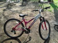 10 speed mountain bike use for 1 summer its pink like