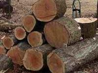 WE HAVE SEASONED OAK FOR SALE; 1/2 LOAD $40.00 CASH