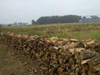 "Seasoned split oak firewood 16"" length $50 per rick"