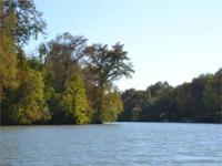 10 acres is available with guadalupe river frontage for