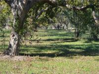 48.925 acres on the guadalupe river and HWY 123 is