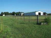 93 a/c. Fenced and Cross Fenced Land 60 x 200 Horse